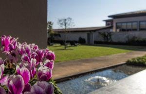 giardino-posteriore-relax-comfort-flowers-ciclamini-hotel-villa-bartolomea
